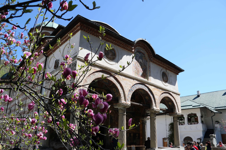Kloster Cozia bei Calimanesti